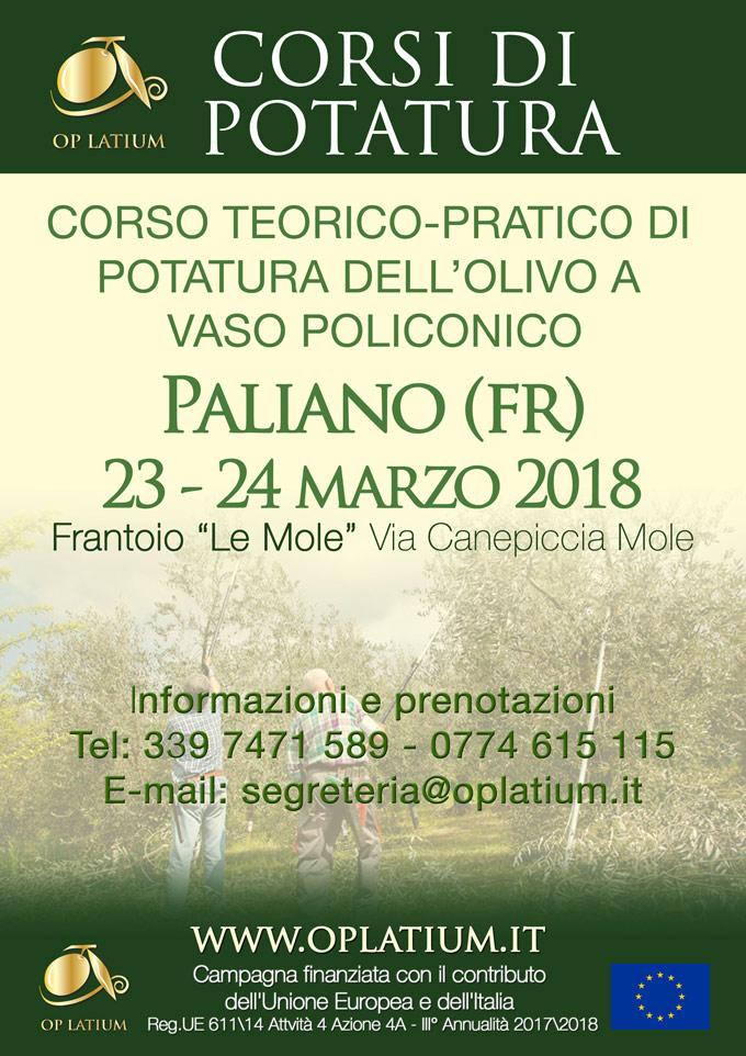 Corso di potatura dell'olivo a vaso policonico a Paliano (Frosinone) 23-24 marzo 2018