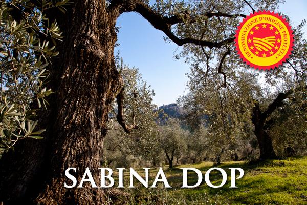 Olio Extra Vergine di Oliva  SABINA D.O.P.
