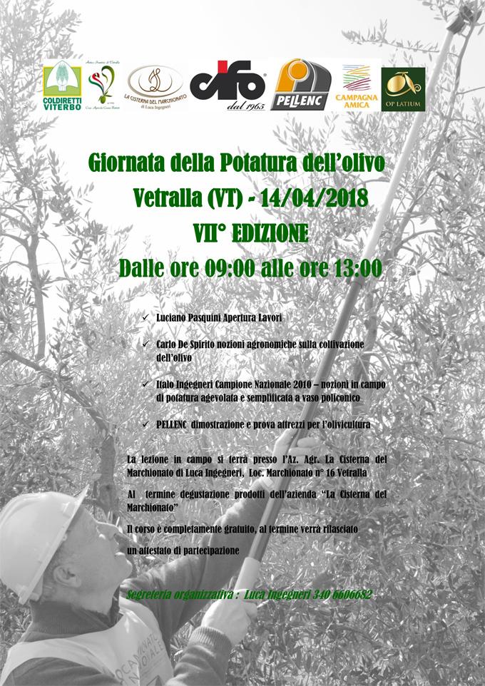 Corso di potatura a Vetralla, con il campione nazionale 2010,  Italo Ingegneri.