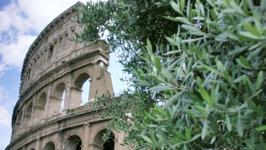 Olio Roma IGP: il nuovo marchio in fase di riconoscimento. Intervista a David Granieri