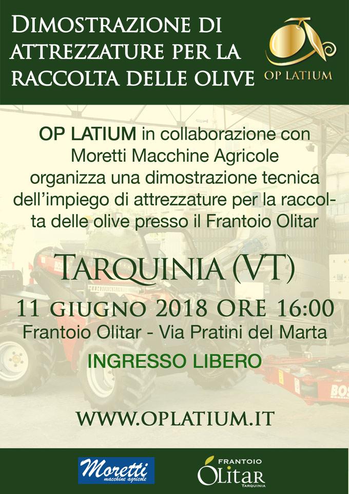 Dimostrazione di attrezzature per la raccolta delle olive a Tarquinia (VT) lunedì 11 giugno