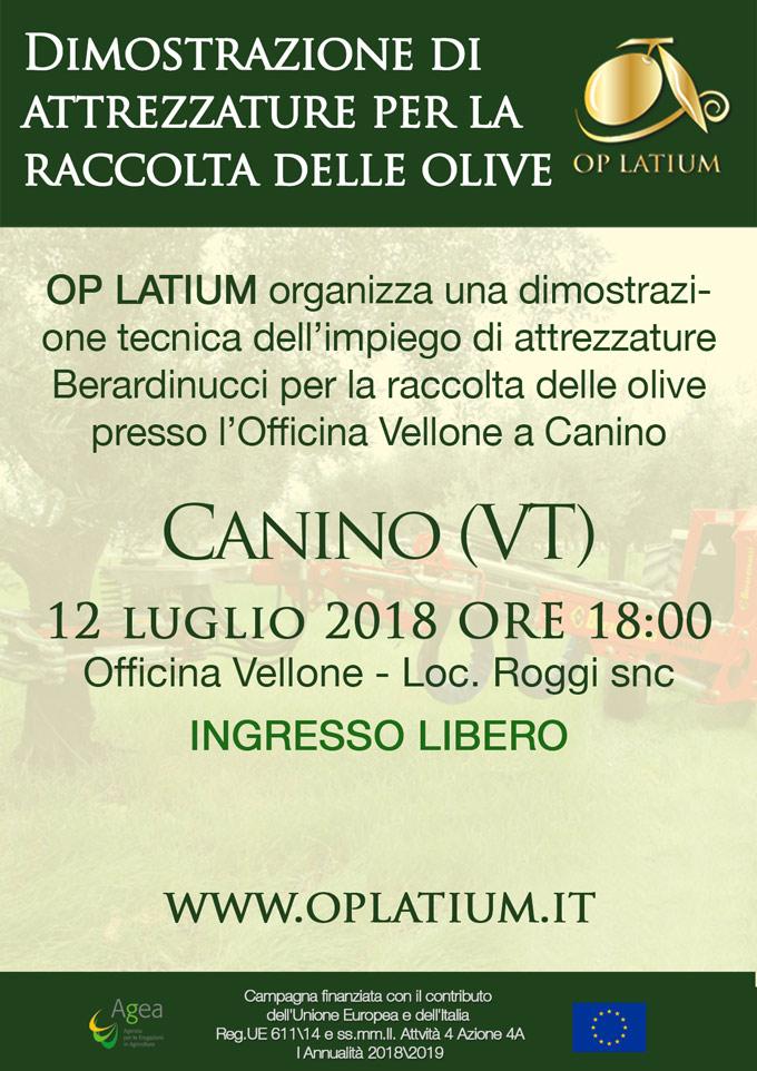 Dimostrazione uso di attrezzature per la raccolta delle olive. Canino (VT) 12 luglio 2018