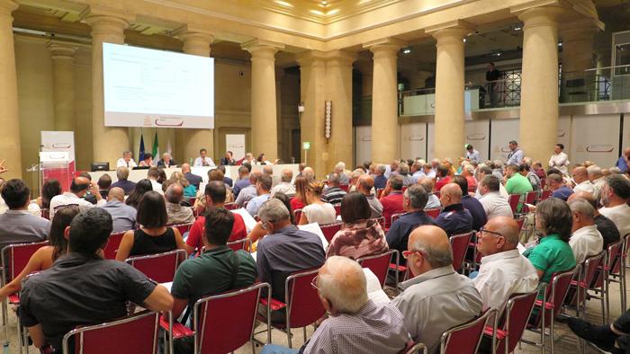 Olio di Roma IGP: superata l'audizione pubblica si procede verso il riconoscimento della denominazione