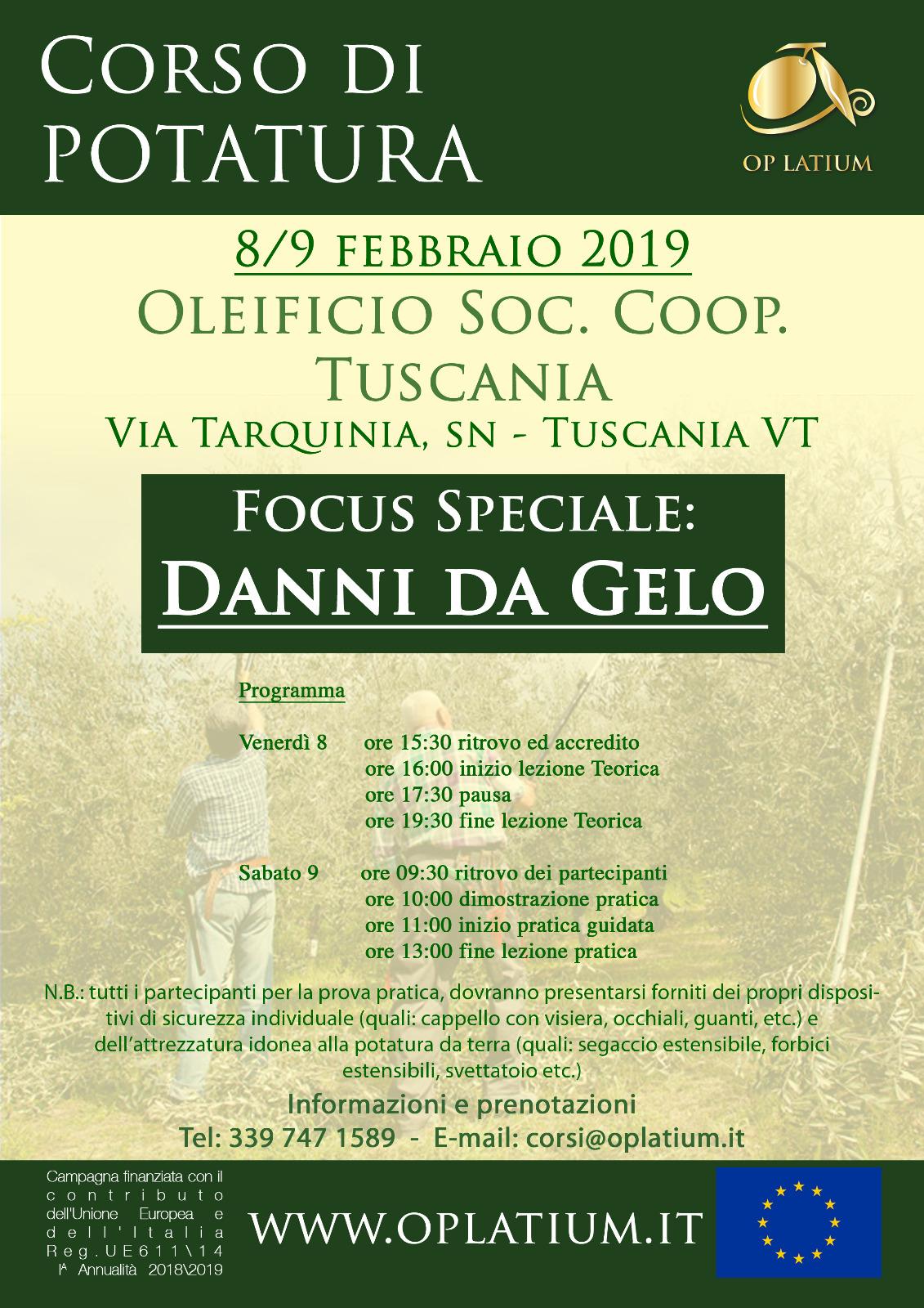 Corso di potatura dell'olivo a Tuscania (VT) 8 e 9 febbraio 2019. Focus speciale danni da gelo.