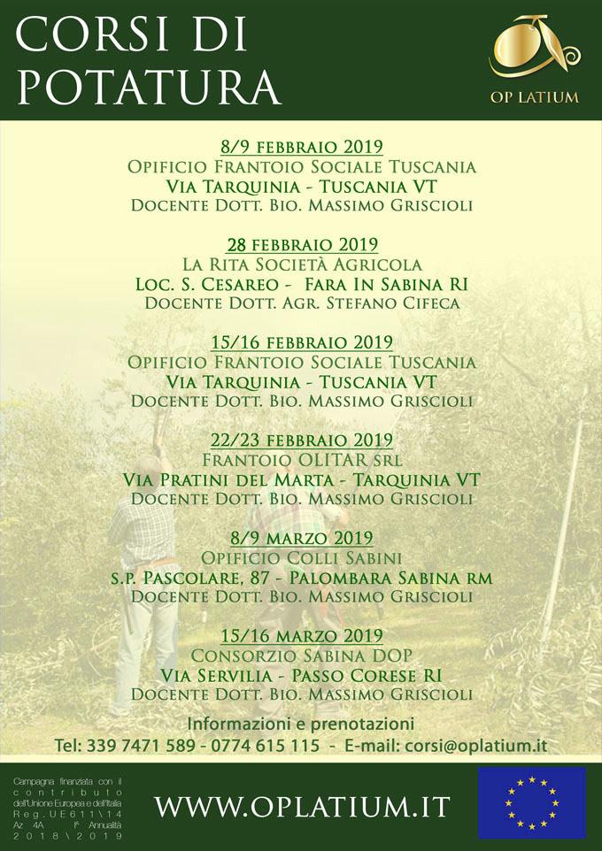 Corsi di potatura dell'olivo a vaso policonico nel Lazio anno 2019