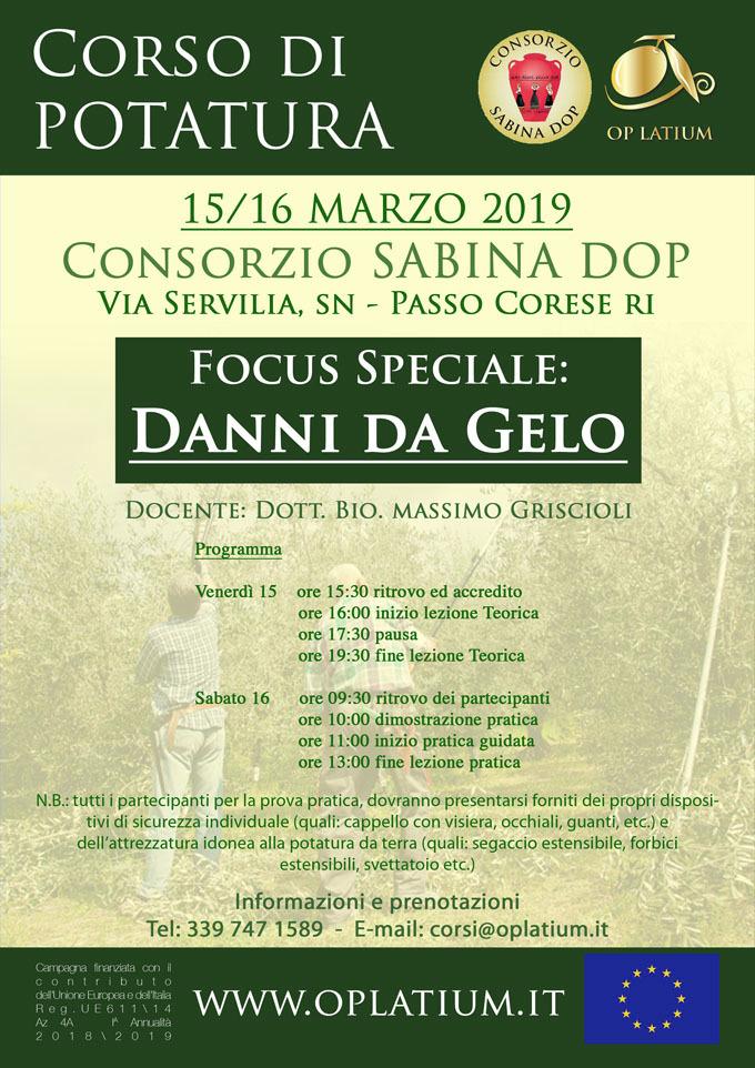 Corso di potatura dell'olivo a Passo Corese (RI) 15 e 16 marzo 2019. Focus speciale danni da gelo.