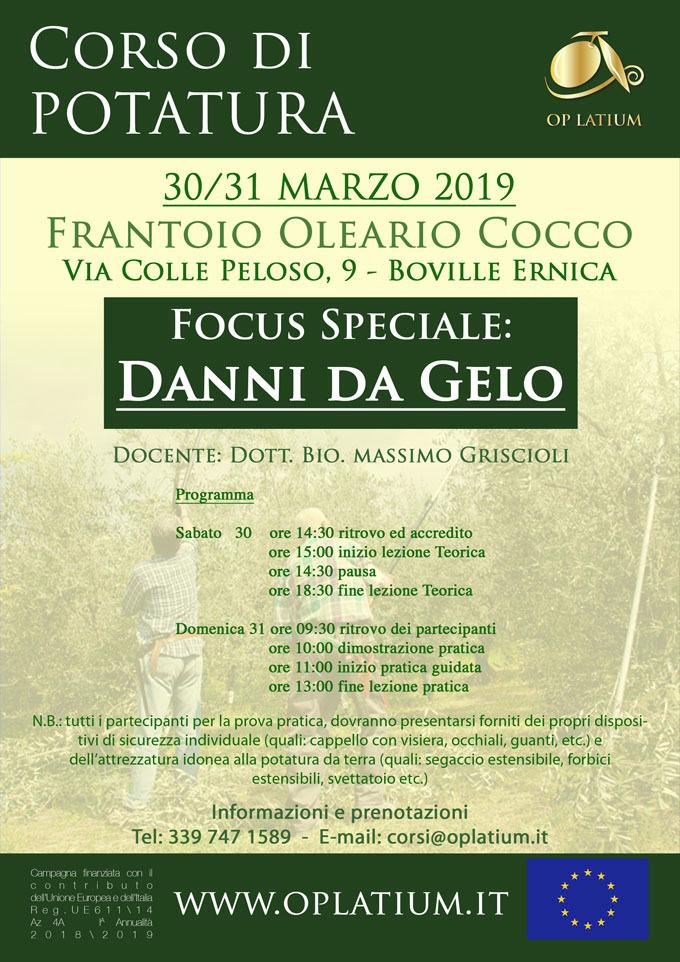 Corso di potatura dell'olivo a Boville Ernica (FR) 30 e 31 marzo 2019. Focus speciale danni da gelo.
