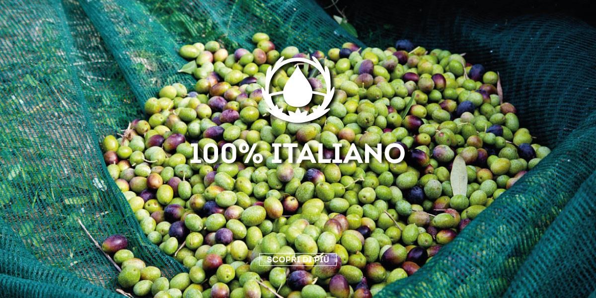 Estratto da olive italiane accuratamente selezionate