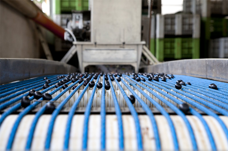 OP Latium: presentazione della macchina calibratrice per i produttori romani