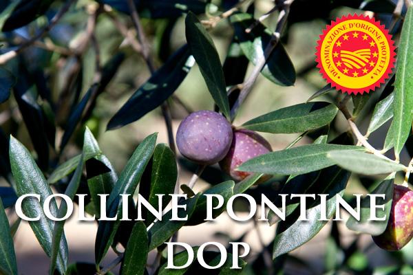 Olio Extra Vergine di Oliva COLLINE PONTINE  D.O.P.