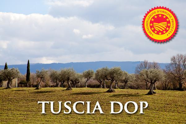 Olio Extra Vergine di Oliva TUSCIA D.O.P.