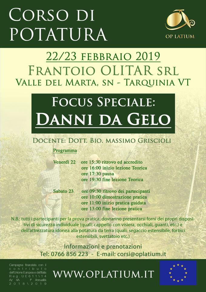 Corso di potatura dell'olivo a vaso policonico a Tarquinia 22-23 febbraio 2019. Focus speciale danni da gelo.