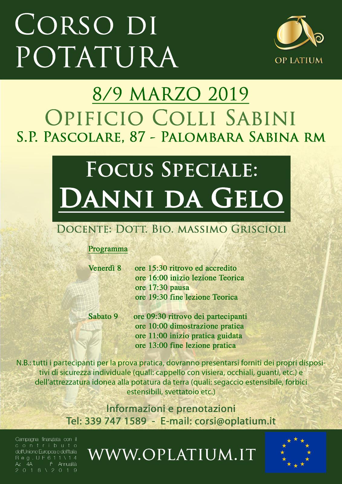 Corso di potatura dell'olivo a Palombara Sabina (Roma) 8 e 9 marzo 2019. Focus speciale danni da gelo.